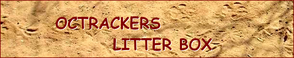 OCTRACKERS  LITTER BOX - ANALYZING THE SCAT